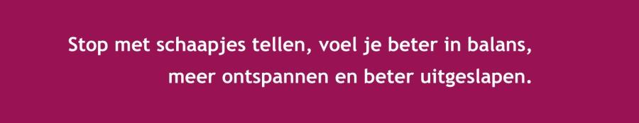 slaapproblemen Nijmegen; slaapbegeleiding, slaapcursus; slaaptraining regio Nijmegen; slapeloosheid; slaapkwaliteit; slaapkliniek; slaapcursus Grave; slaaptraining Cuijk; slaaptherapie Lent; slaapcursus Oosterhout; slaaptraining Bemmel; slaaptherapie Groesbeek; slaapcursus Elst; Slaaptraining Weurt; slaaptraining Boxmeer; slaaptherapeut regio Nijmegen; SlaapSlim.nu; Kempenhaeghe; biologische klok; slaappatroon, hypnogram, diepe slaap, REM-slaap; ontspanning